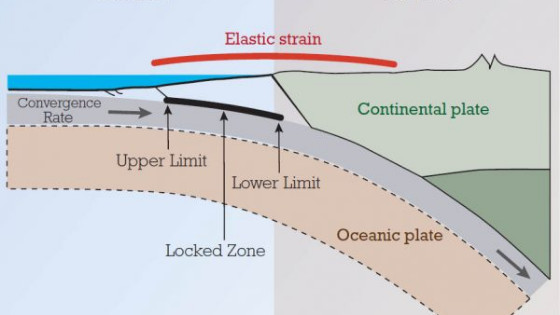 Long endurance Monitoring of Tectonic Motion