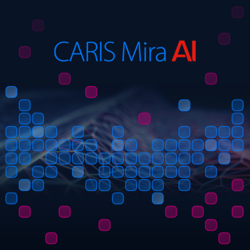 CARIS Mira AI - Sonar Noise Classifier